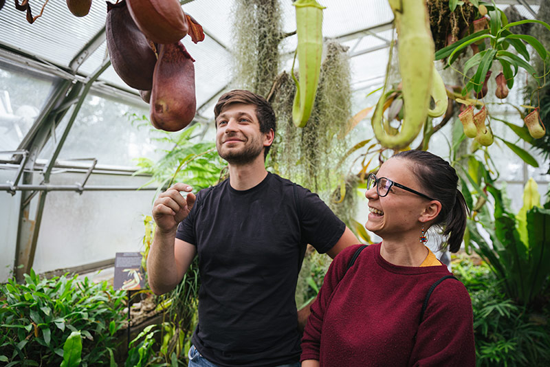 Two visitors inside one of the glasshouses at the Oxford Botanic Garden. Photo by Ian Wallman