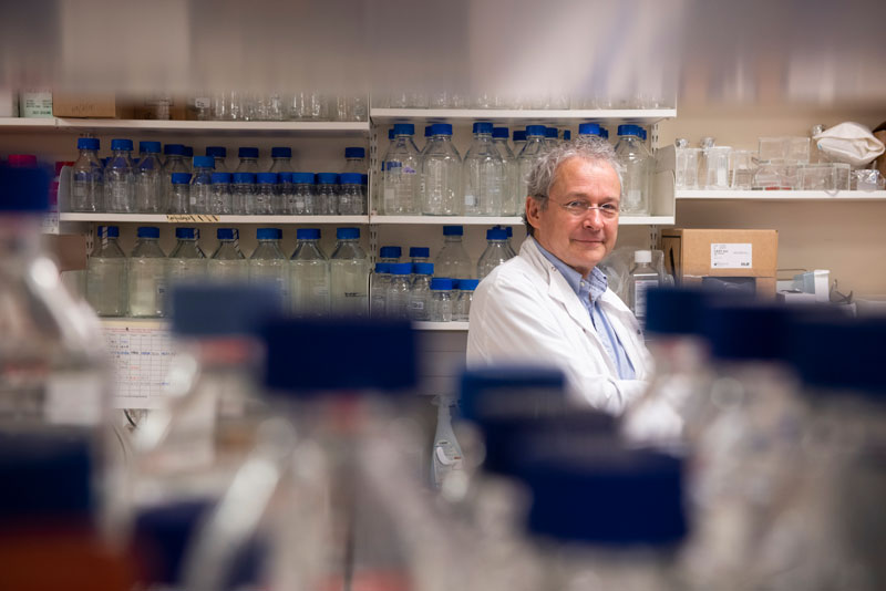 Professor Holländer in the lab. Photo by John Cairns.